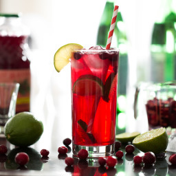cranberrylimevodkasodacocktail 3723 2 256x256   My Go To Holiday Cocktail – Quick, easy, festive, and low in sugar!