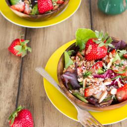 IMG 9518 256x256   Spring Salad with Strawberry Lemon Basil Dressing
